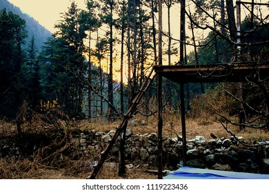 Camps in Kasol forest