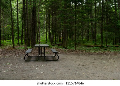 Campsite in Arrowhead Provincial Park, Ontario Canada