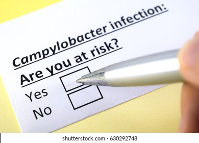 Campylobacter infection: are you at risk? yes or no