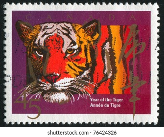 CANADA - CIRCA 1988: stamp printed by Canada, shows tiger, circa 1988