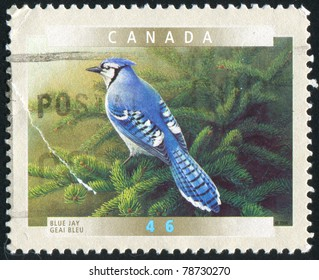 9984c2874c0 CANADA - CIRCA 2000  stamp printed by Canada