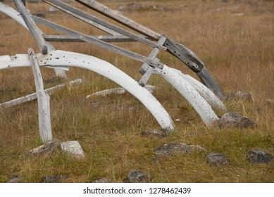 Canada, Nunavut, Kekerten Island. Kekerten Historic Park, Qammaq, whaler's shelter made from wood and whale bone. .