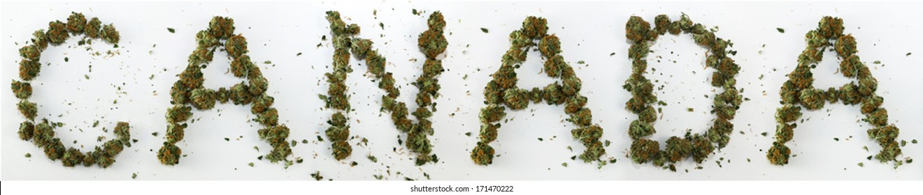 """Canada Spelled With Marijuana. The word """"Canada"""" spelled out with real marijuana."""