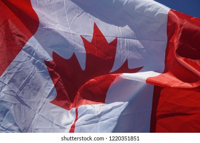Canadian Flag or the Flag of Canada waving in the wind