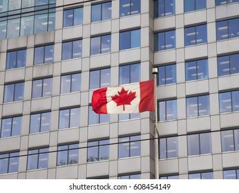 Canadian flag downtown Toronto, Ontario, Canada