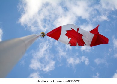 Canadian flag with maple leaf on the pole blowing in the wind and summer sunny blue sky. Unfiltered, with natural lighting.