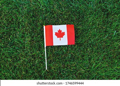 Canadian flag on green grass background. Happy Canada day. 1st July celebrate national holiday of Canada called as Canada's birthday
