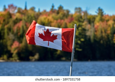 Canadian flag waiving in the wind in the fall landscape