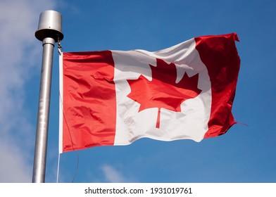 Canadian maple leaf flag at Elk Island National Park in Alberta Canada