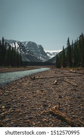 canadian mountain river and river bank with driftwood in the foreground and snowy mountains in the background, Jasper National park, Alberta, Canada