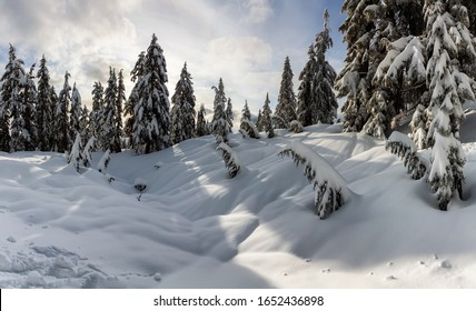 Canadian Nature Landscape covered in fresh white Snow during winter. Taken in Seymour Mountain, North Vancouver, British Columbia, Canada.