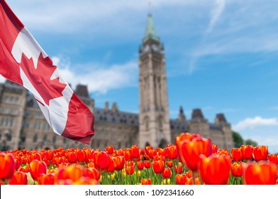 Canadian Parliament Building at Ottawa with full bloom red and yellow tulips in front