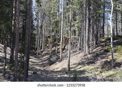 Canadian sights near Banff
