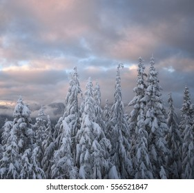 Canadian winter scene in the mountains, North Vancouver, British Columbia, Canada