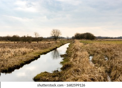 Canal ditch with water landscape view at drained wetland. Natura 2000 Bagno Pulwy protected area in Poland.