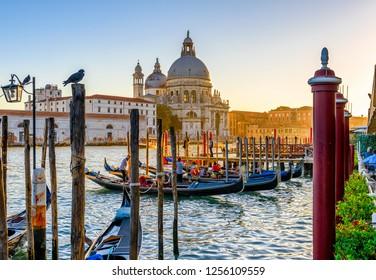 Canal Grande with Venice gondola and Basilica di Santa Maria della Salute in Venice at sunset, Italy. Architecture and landmarks of Venice. Venice postcard
