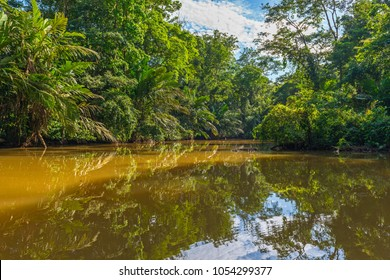 Canal in the national park of Tortuguero with its tropical rainforest along the Caribbean Coast of Costa Rica, Central America.
