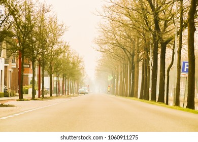 The canal road has a row of trees. In the Netherlands