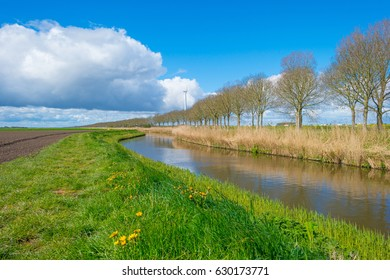 Canal through the countryside in spring