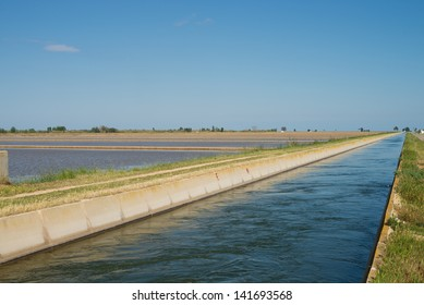Canal  used to irrigate rice paddies at Ebro delta, Spain