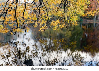 canals of Amstelveen, the Netherlands, autumn time