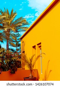 Canary island. Tropical travel concept