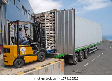 Canary islands, Spain - december 17, 2015: Operator driving a forklift to load fruit boxes inside a truck