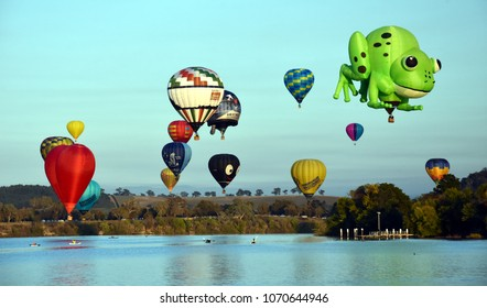 Canberra, Australia - March 11, 2018. Big hummingbird, green frog and colourful hot air balloons flying above Lake Burley Griffin and Black Mountain, as part of the Balloon Spectacular Festival.