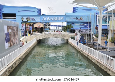 Cancun, Mexico - 4 January 2017: The Aquarium at La Isla shopping center in luxury resort on Mayan Riviera, Yucatan Peninsula