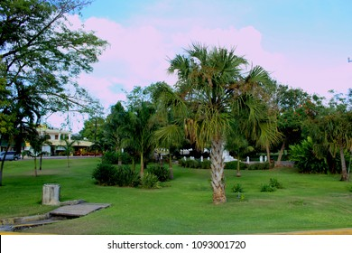 Cancun park in the center of town