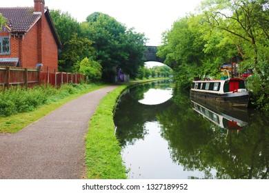 Canda geese on Birmingham path