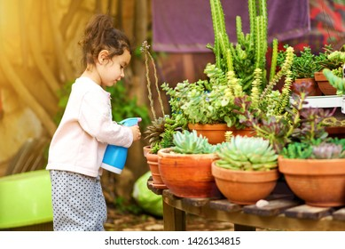 Candid cozy image cute child, little gardener sprinkling plants. Young sweet girl sprays succulent and cactus on summer courtyard garden.