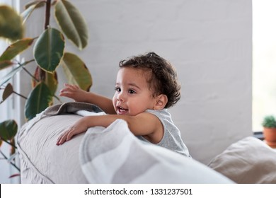 Candid portrait of a cute baby cruising, holding on to back of  couch sofa