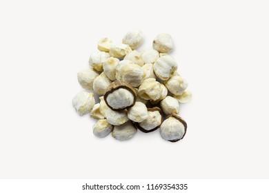 Candlenut or kukui on white background