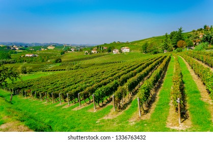 CANELLI, ASTI, PIEMONTE, ITALY - September 12, 2018: Vineyards in the Langhe and Monferrato area, renowned for the production of wine and World Heritage site.