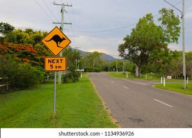 Cangaroo sing, Australia, Queensland, Oceania, slow down