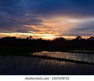 Canggu- Cloudy sunset reflecting off of the harvested rice fields.