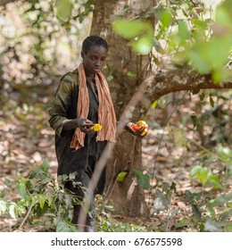 CANHABAQUE, GUINEA BISSAU - MAY 4, 2017: Unidentified local woman in pink scarf walks among greens in a village of the Canhabaque island. People in G.-Bissau still suffer of poverty