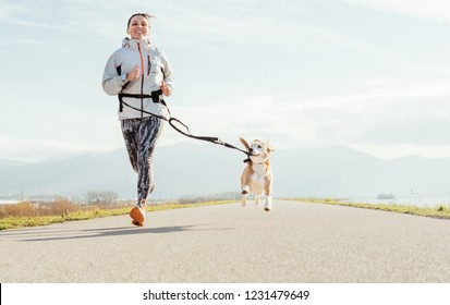 Canicross exercises. Female runs with his beagle dog and happy smiling. Autumn spring outdoor sport activity