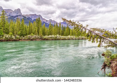 Canmore's Bow River Loop Trail with the 12-km long massif rock front of Mt Rundle in the background on the southern Banff range of the Canadian Rockies.