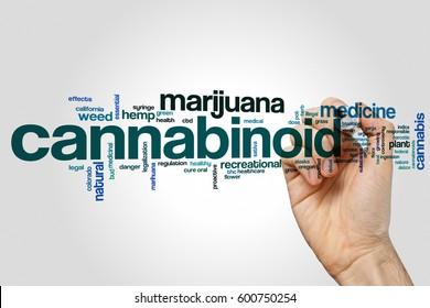 Cannabinoid word cloud concept on grey background.