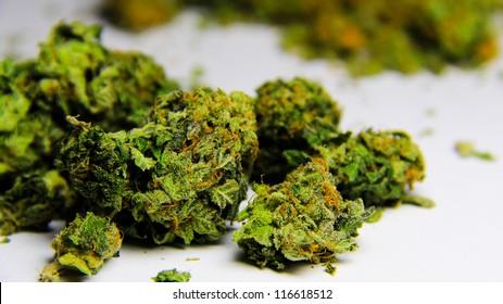 Cannabis 2. High grade purple kush marijuana against a white background.
