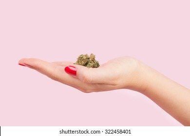 Cannabis bud in female hand with red fingernails isolated on pink background. Teenager drug abuse.