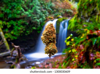 Cannabis bud floating in front of a beautiful landscape with waterfall, taken in Vancouver Island, Canada