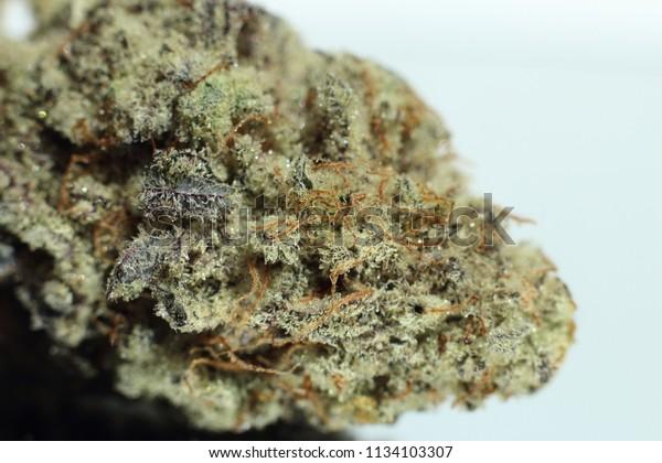 Mac strain