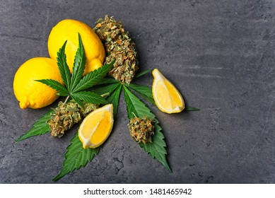 Cannabis buds / nugs and leaves with sliced lemon. Limonene terpene concept on gray background with copy space.