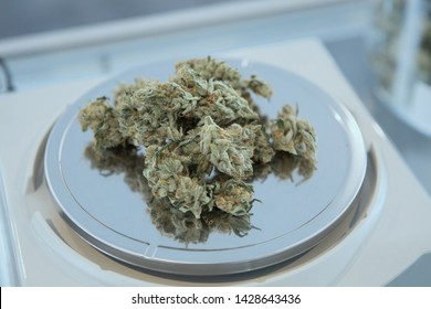 Cannabis buds on weight scale. Medical / Recreational cannabis. Cannabis Dispensary buds for sale.