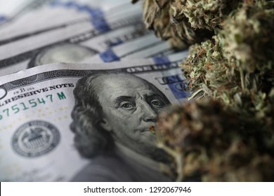 cannabis business concept. Medical Marijuana sales in market