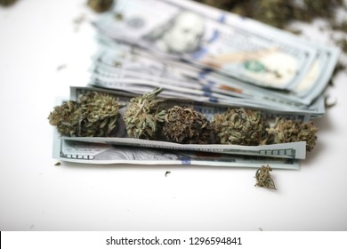 cannabis business concept. Medical Marijuana and Money
