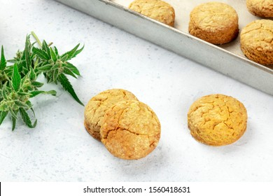 Cannabis butter cookies with marijuana buds, homemade healthy freshly baked biscuits